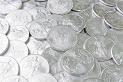 Silver: $50-99 ( includes business name on BACA website and on commemorative 2021 calendar )